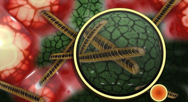 potencial homeopatie pri antimikrobialnej rezistencii